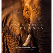 Remembering Elephants - Standard Edition