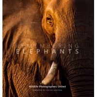 Remembering Elephants - Standard Edition