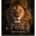 Remembering Lions - Standard Edition