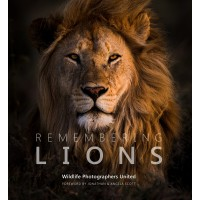 Remembering Lions - Standard Edition - Pre Order