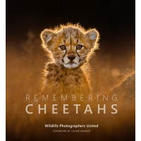Remembering Cheetahs - Standard Edition
