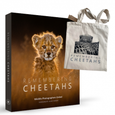 Remembering Cheetahs - Standard Edition - With Tote Bag